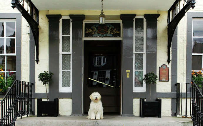 150 dog-friendly hotels in the UK with leash-free play areas for dogs